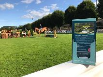 Planning on visiting the DublinHorseShow?